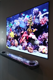 Beautiful LG Wallpaper TV Installed By Summit